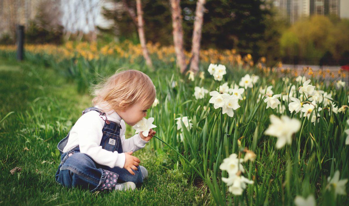 Kindervriendelijke-Tuin-Tuinbestratingwinkel